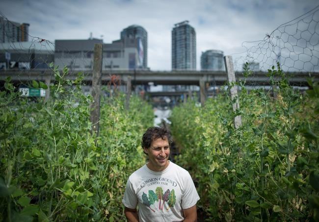 Michael Ableman, co-founder and director of Sole Food Street Farms, poses for a photograph at the urban farm in downtown Vancouver, B.C., on Thursday July 13, 2017. Ableman has achieved something he thought unimaginable, creating thriving urban farms on pavement and contaminated soil in one of Canada's poorest neighbourhoods. THE CANADIAN PRESS/Darryl Dyck