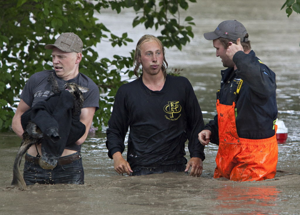 Kevan Yaets and his cat Momo are led to safety escaping his pickup truck swept downstream in High River, Alta. on June 20, 2013 after the Highwood River overflowed its banks.  (JORDAN VERLAGE / The Canadian Press)