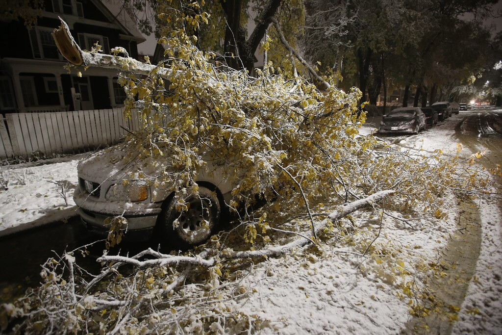 Heavy wet snow caused damage to thousands of trees, with many branches falling on cars. (Johh Woods / The Canadian Press files)