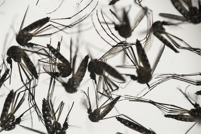 Second pregnant woman from Missouri has Zika virus