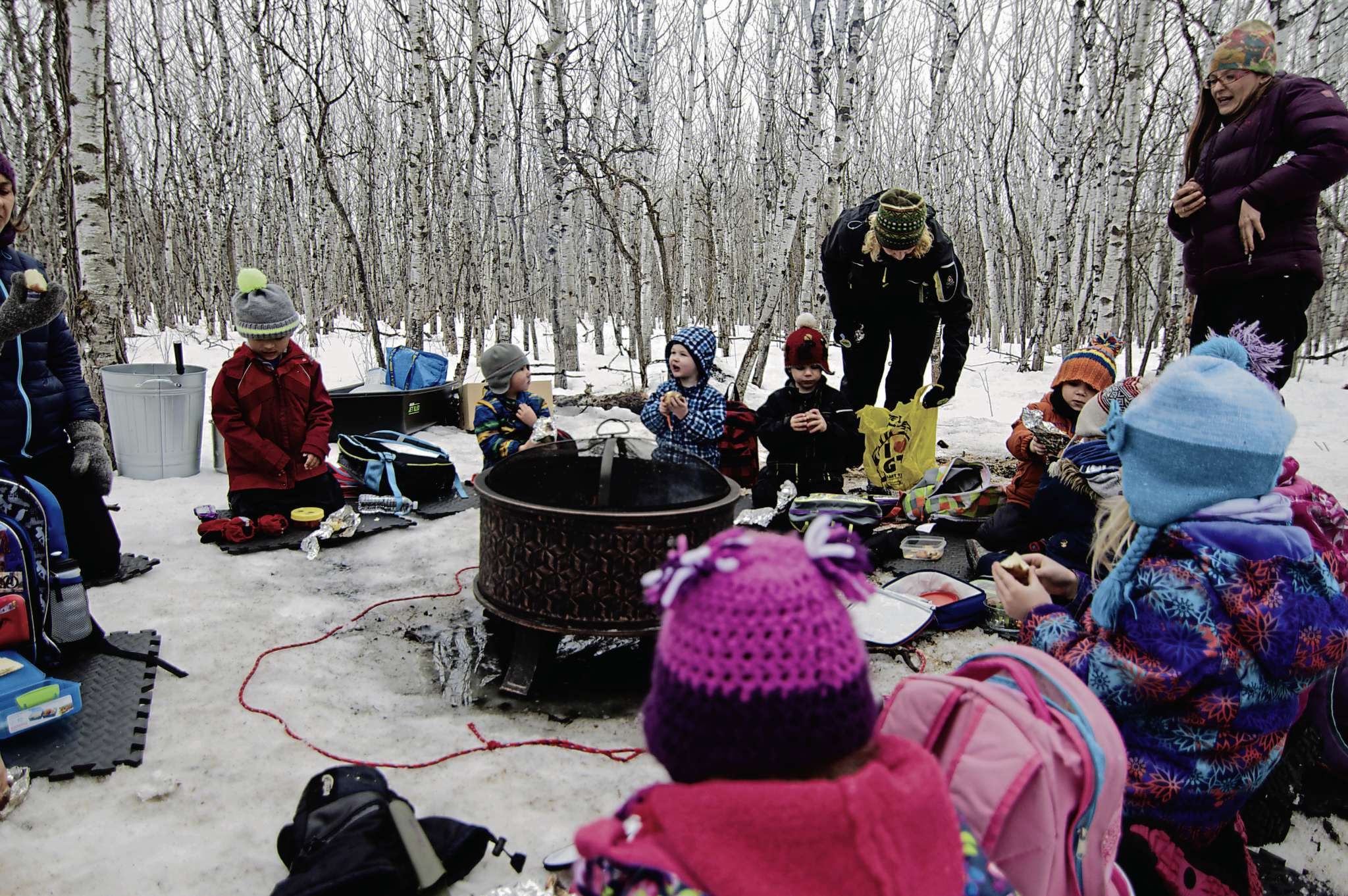 The Field and Forest Nature School does one outdoor session per week in a natural aspen forest.