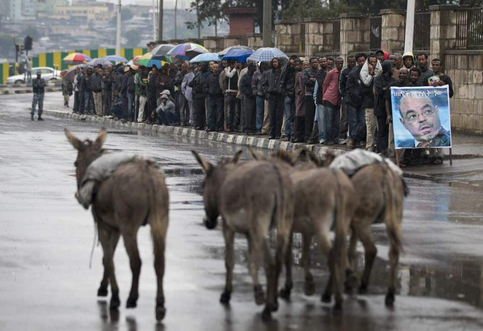 Donkeys walk past a queue of men waiting to pay their respects to the late Prime Minister Meles Zenawi, lying in state at the national palace, in Addis Ababa, Ethiopia. Zenawi is scheduled to be buried Sept. 2. (AP Photo/Rebecca Blackwell)