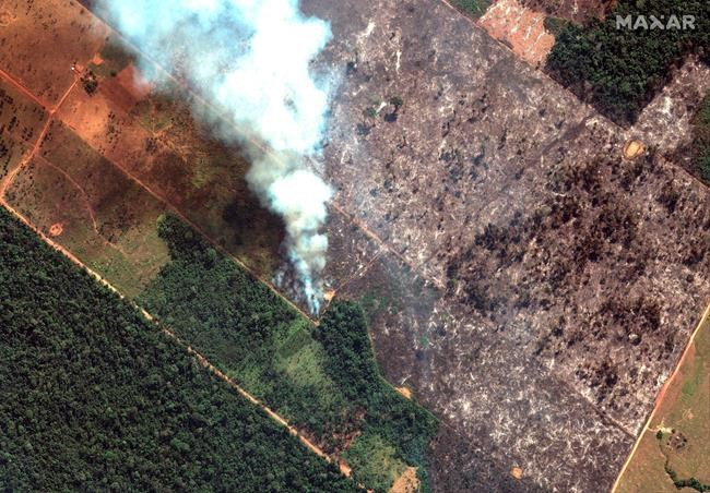 In this Aug 15, 2019 satellite image provided by Satellite image ©2019 Maxar Technologies, shows fires burning in the State of Rondonia, Brazil, in the upper Amazon River basin. Brazil's National Institute for Space Research, a federal agency monitoring deforestation and wildfires, said the country has seen a record number of wildfires this year, an 84 percent increase compared to the same period last year. The states that have been most affected by fires this year are Mato Grosso, Para and Amazonas, all in the Amazon region. (Satellite image ©2019 Maxar Technologies via AP)