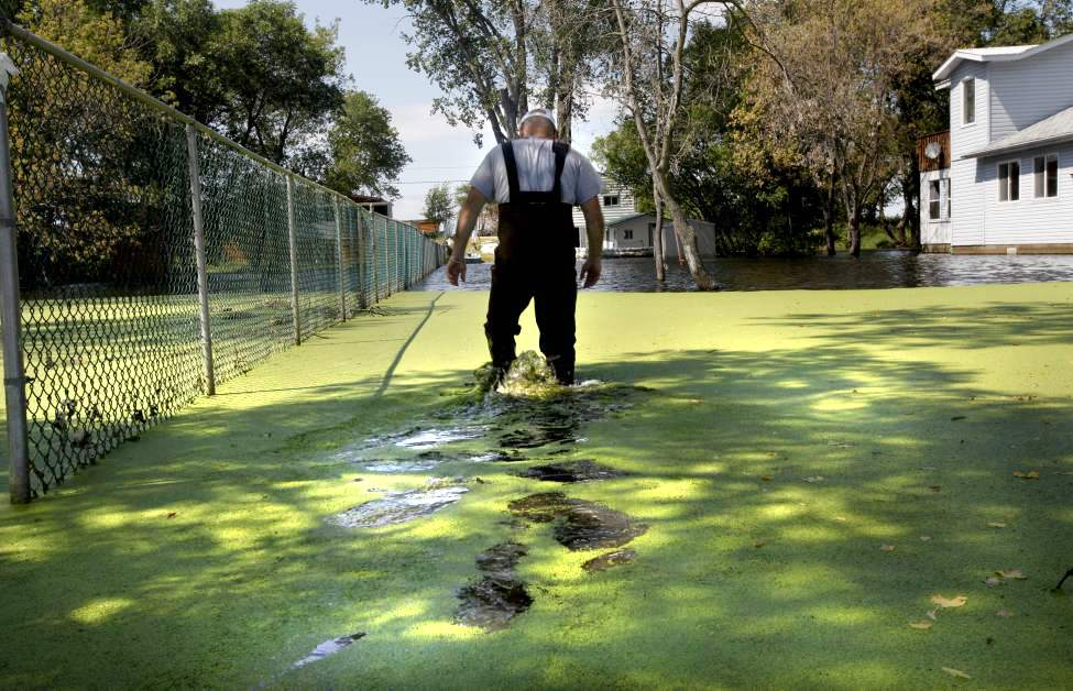 Jeff Douglas makes his way through green, stagnant water to get to his dwelling at Twin Lakes Beach after Lake Manitoba rose over eight feet  due to a high water table and spring flooding. 