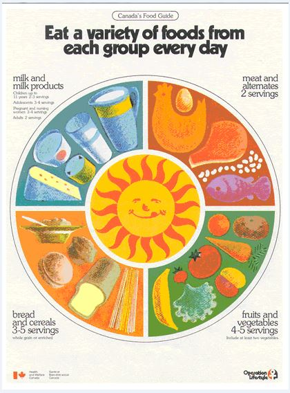The revised guide for the first time used colourful pictures of foods that were grouped in wheel-like fashion around a sun graphic. This Guide reduced the number of food groups from five to four - combining fruit and vegetables since their nutrient contributions overlapped. The milk group became Milk and Milk Products, paving the way for the inclusion of other dairy food choices. Meat and Alternates replaced Meat and Fish.