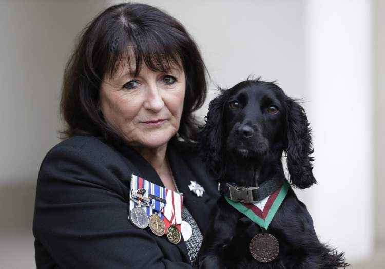 Jane Duffy, mother of British Army Lance Corporal Liam Tasker who was killed during the conflict in Afghanistan, wears her son's medals as she holds Grace, a search dog with the British army, wearing a Dickin Medal, Britain's highest award for bravery by animals - that was posthumously awarded to Theo, a bomb-sniffing army dog, following a special ceremony held at Wellington Barracks, in central London, Thursday, Oct. 25, 2012. (AP Photo/Lefteris Pitarakis)