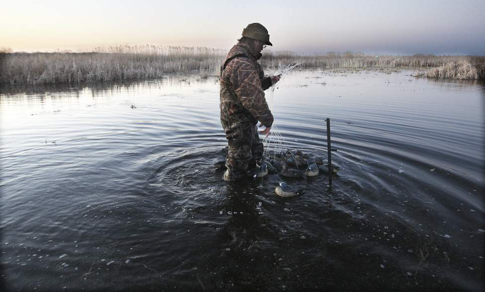 Fred Greenslade sets out decoys at Delta Marsh.