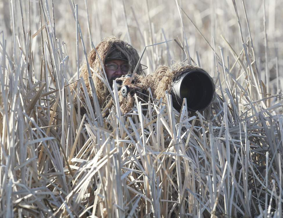 Fred Greenslade waits for ducks to commit to his decoys at Delta Marsh.