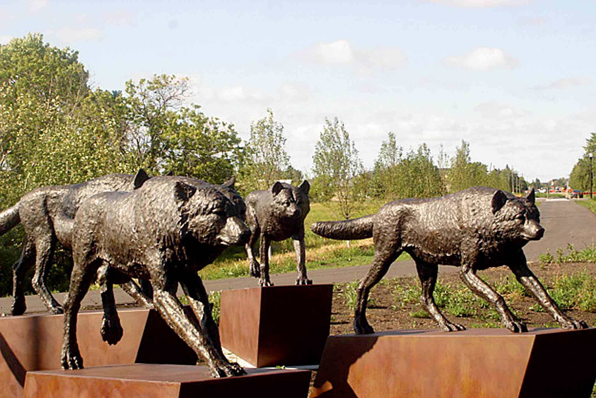The wolf sculptures at Henderson Highway should be placed in an environment more like the one surrounding the wolves on Chief Peguis Trail (above).