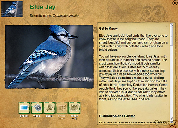The virtual hiking tour features audio, and video clips on various species to be found in the park.