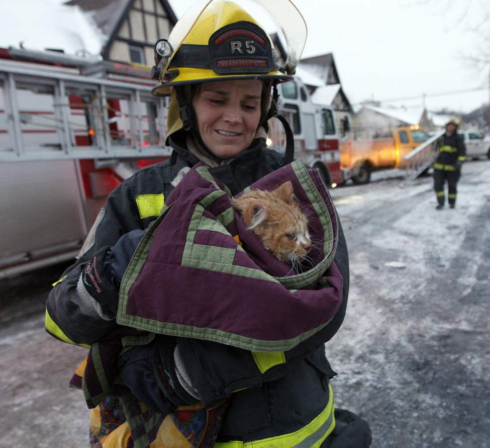 A demolition crew and fire investigators sifting through the rubble found this cat a day after an apartment fire on St.Paul street.  The cat survived the fire and demolition and is now back with its owner. December 29, 2011