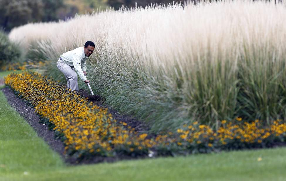 Jaime Chavez, lead gardener for the Assiniboine Park Formal Gardens, prepares a tall grass garden for next year. September 26 2013