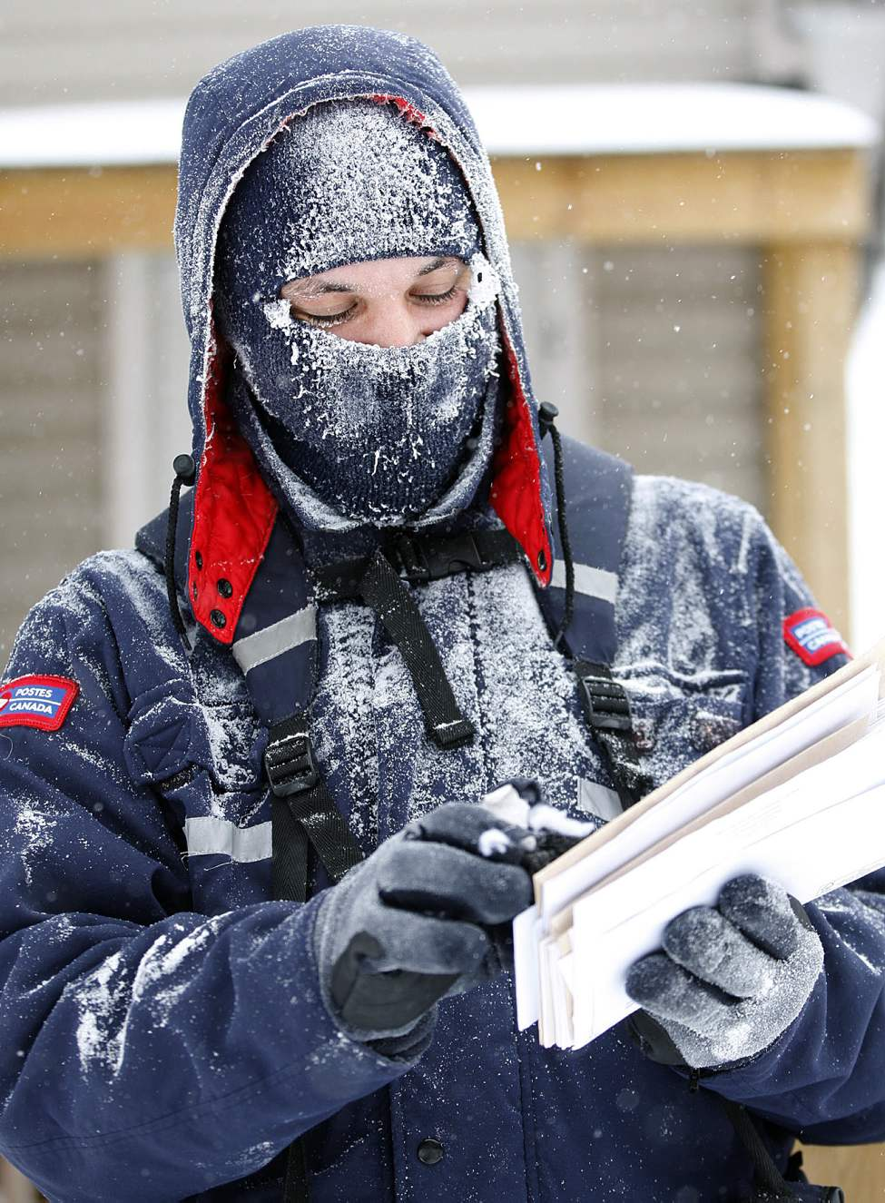 Freezing cold nor blistering wind chills will keep this postal carrier from his appointed rounds. A snow-covered Richard Hughes delivers the mail on Burrows Avenue near Arlington Wednesday.   