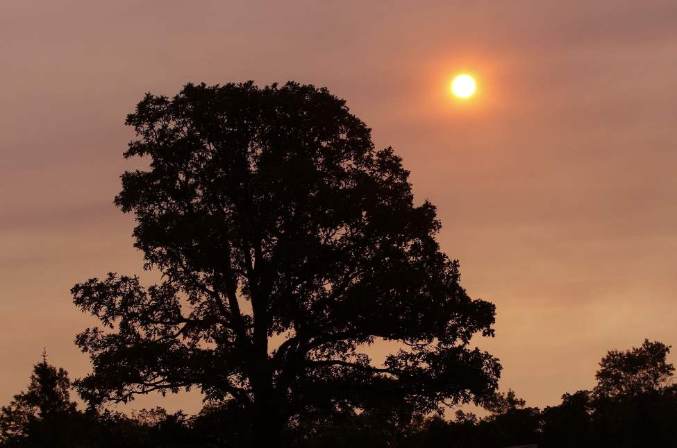 An orange sunrise over Assiniboine Park through the haze. June 27,  2012  (KEN GIGLIOTTI / WINNIPEG FREE PRESS)