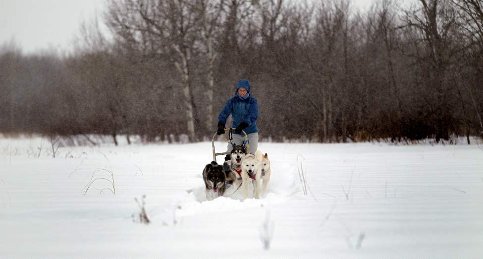 Brad, who shares Samantha's passion for the outdoors, a home-made ice climbing tower graces their backyard, has already packed down the sled trails, a formidable job this winter as five-foot high drifts dwarf the lane into their Interlake rural property where Samantha says she moved to