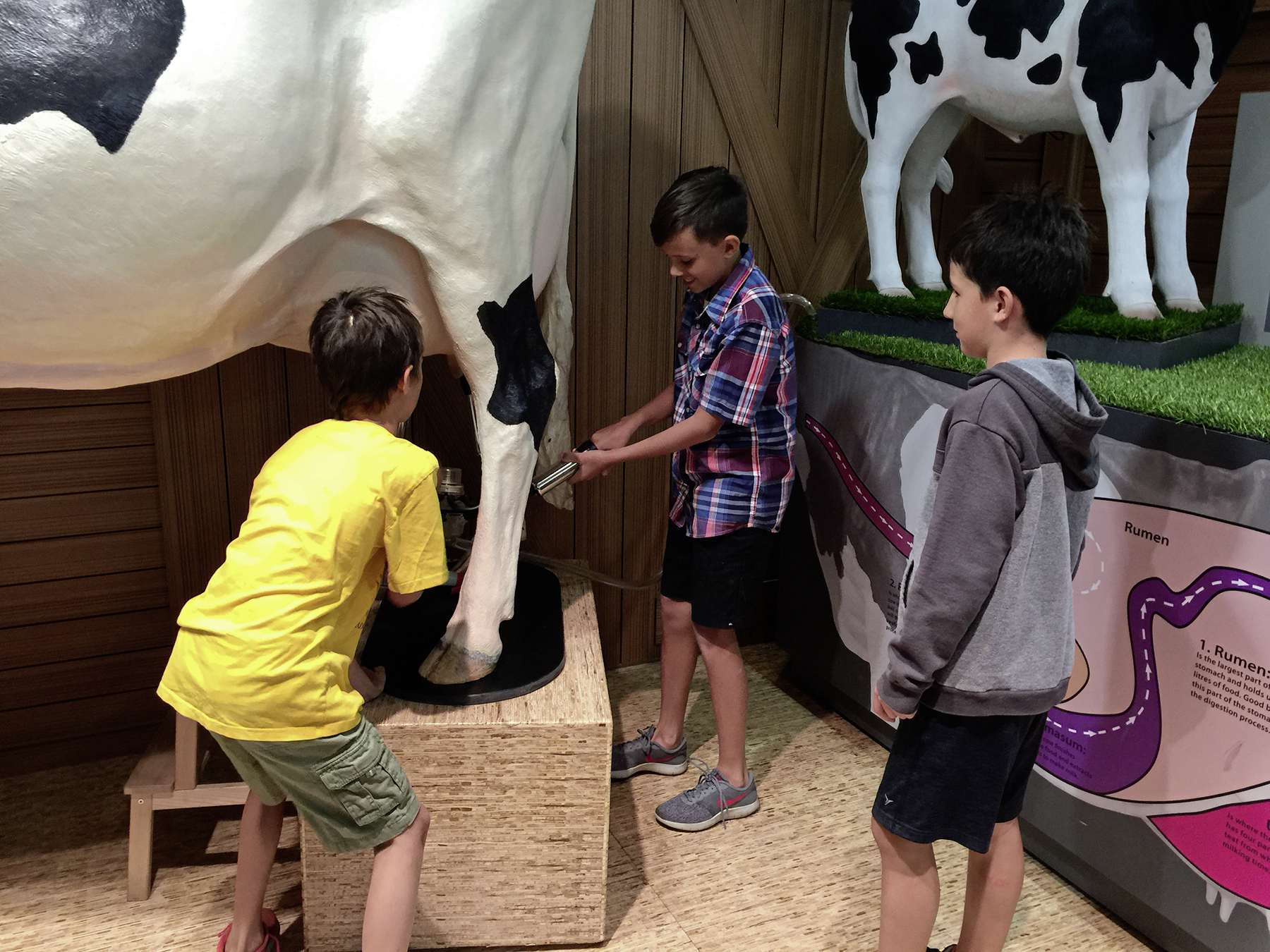 The Bruce D. Campbell Farm and Food Discovery Centre usually sees a lot of school tour groups in June. They've moved many of their lessons and activities online for the public.